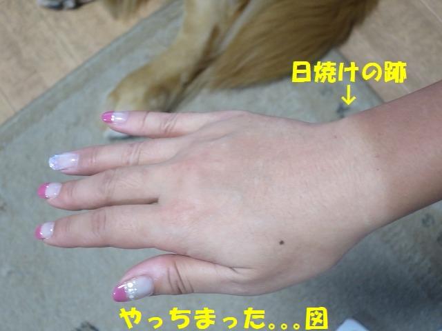 IMG_5724_1.jpg