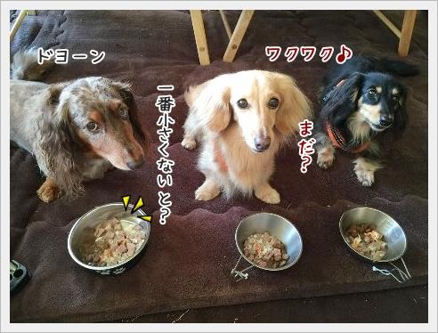 fc2_2015-6-24_09.jpg