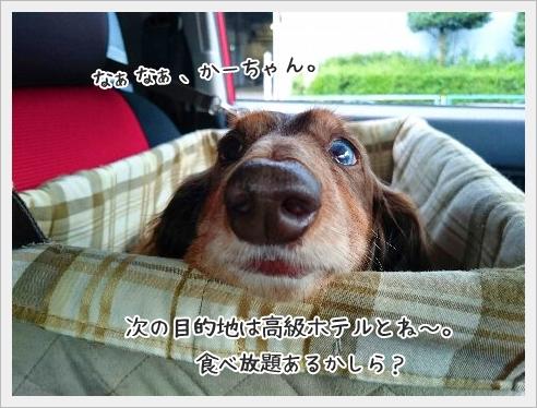 fc2_2015-6-29_07.jpg