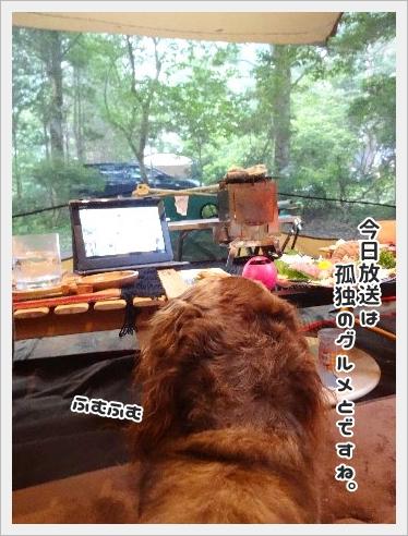 fc2_2015-7-17_03.jpg