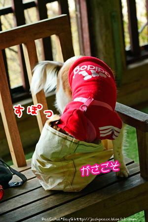 150101_yuasa6.jpg