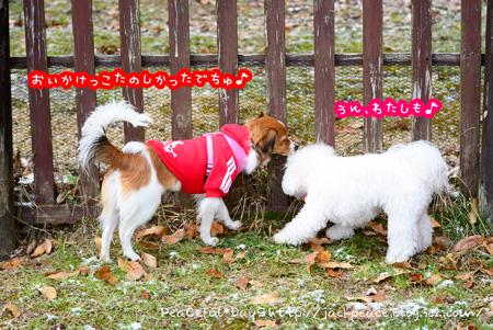150101_yuasa9.jpg