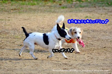 150102_yuasa10.jpg