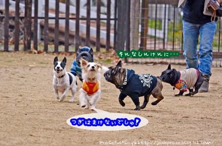 150102_yuasa9.jpg