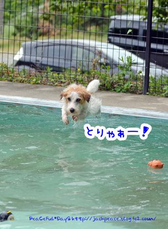 150602_pool1.jpg