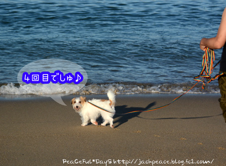 150726_umi.jpg