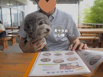 館山ランチ20150628-1