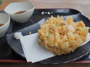 館山ランチ20150628-4