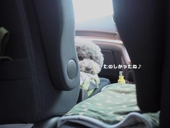 帰りの車20150710-1
