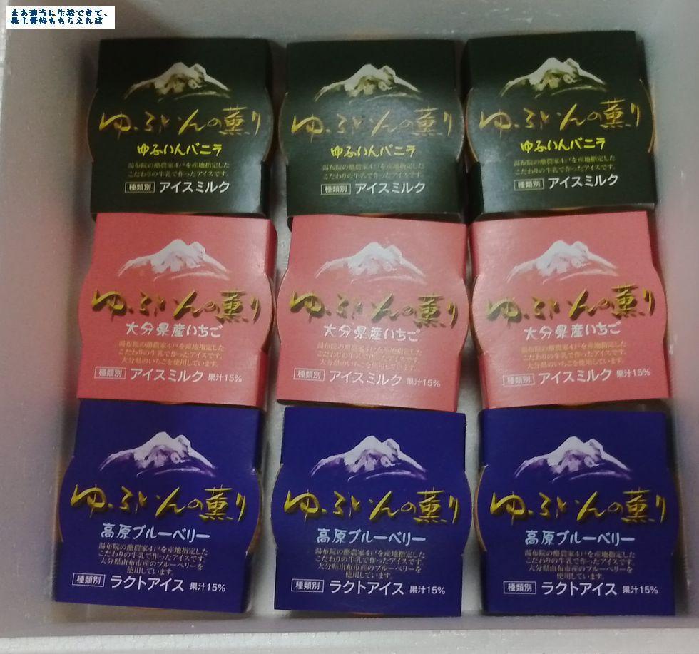 asraport_yufuin-01_201503.jpg