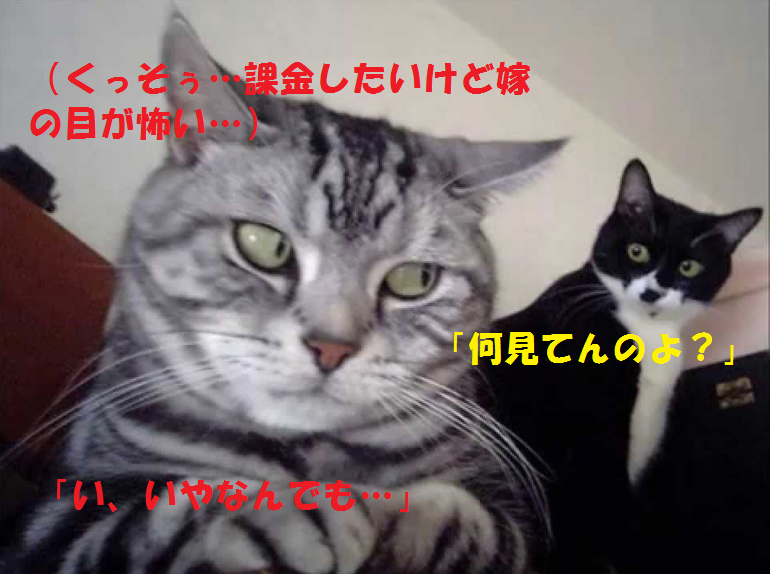 201507191559339b8.png