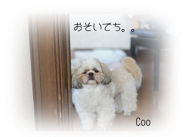 DSC00048_2281.jpg