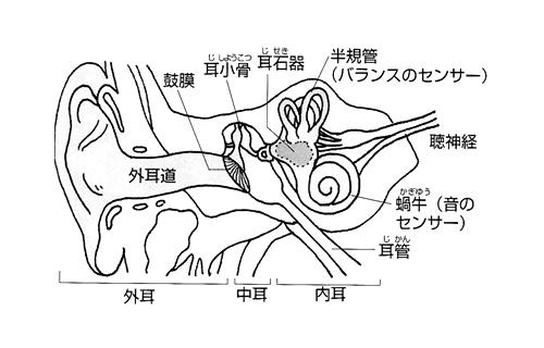 Image 249