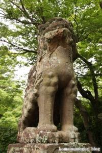 春日神社(松江市奥谷町)38