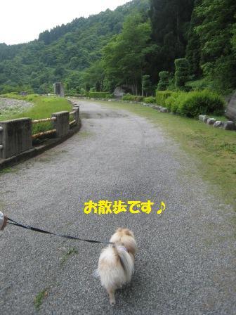 20150607_3.jpg