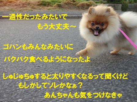 201508041116027fe.jpg