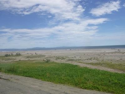 野蒜海岸2