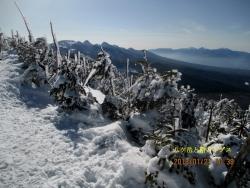 縞枯れ山から南アルプス・八ケ岳連峰
