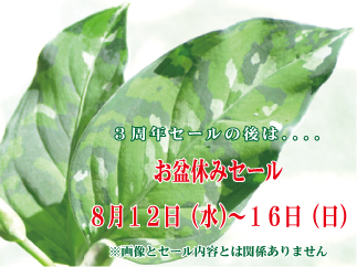 obon_sale_06.jpg