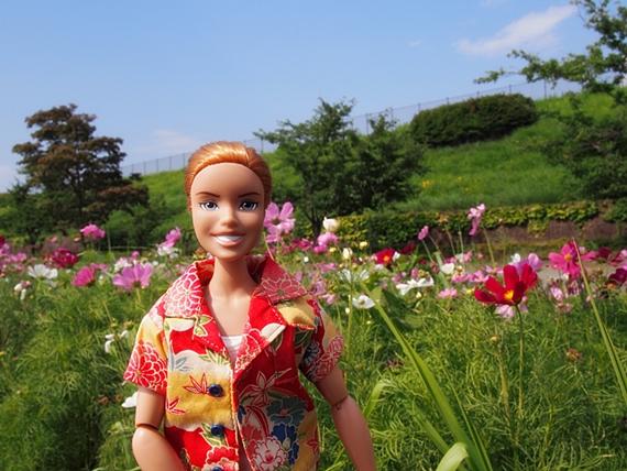hokuto-20150802-09s.jpg