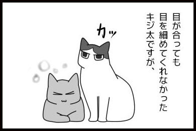 20150611-01.jpg