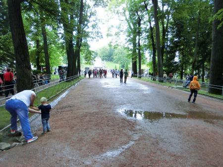 ペテルゴフ 噴水公園12