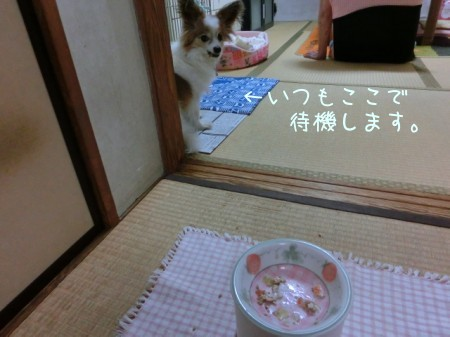 20150805sena_gohan_02.jpg