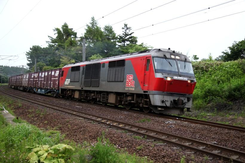 DF55IMG_6802-2.jpg