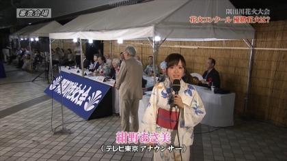 150725隅田川花火 (5)