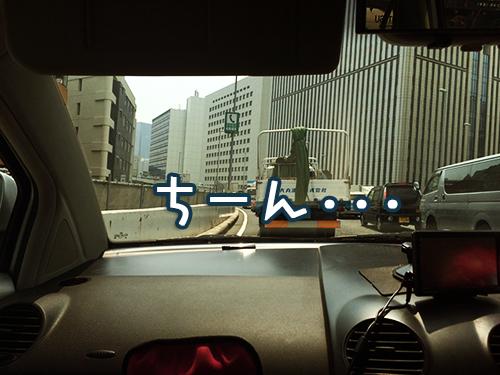 S__14295047.jpg