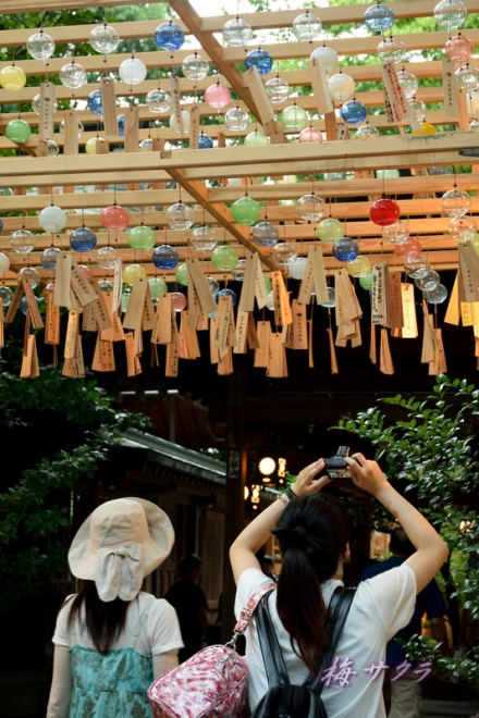 氷川神社1(7-1)変更済