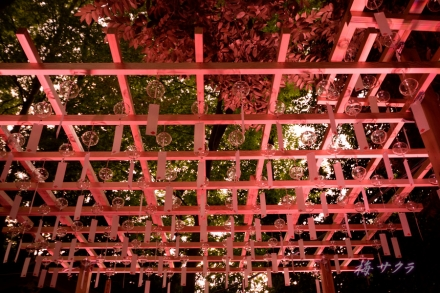 氷川神社1(12-2)変更済