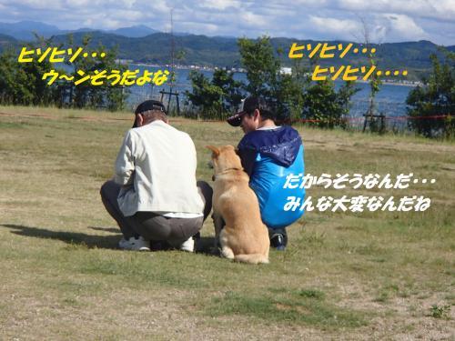 P6060169_convert_20150607111402.jpg