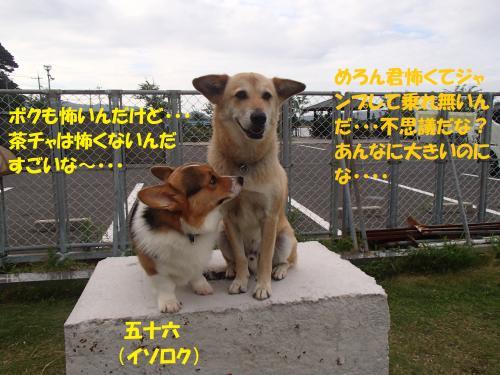 P7180566_convert_20150719093123.jpg