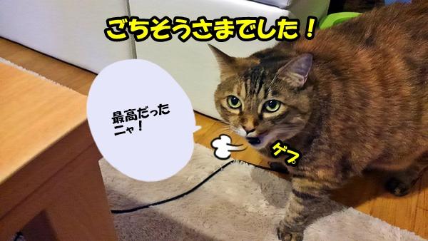 ニャポグルメ3 いなば わがまま猫