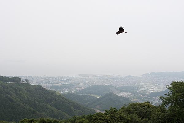 三ヶ根山-3