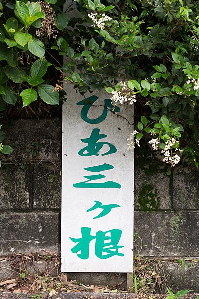 三ヶ根山-4