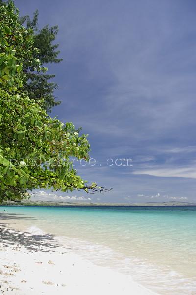スンバ島の海