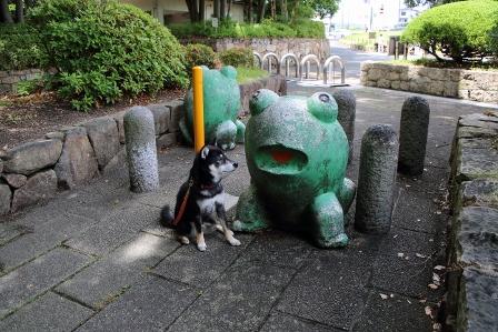 山田池公園4