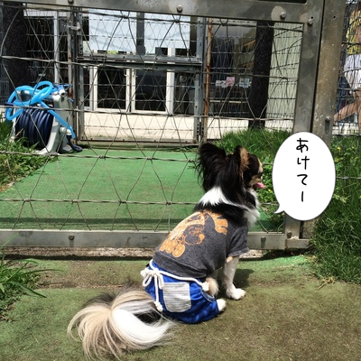 201506141659366b0.png