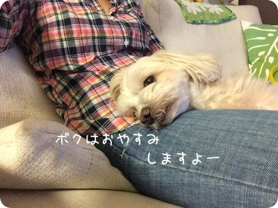 2015080721121351f.png