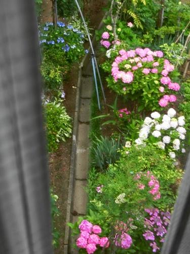 梅雨の日1