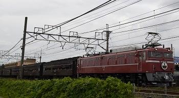 EF8181.jpg