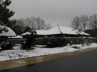 snowlittle6.jpg
