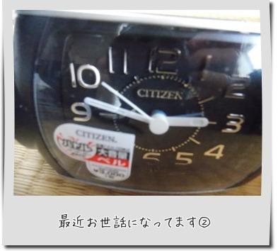 20150712_6.jpg