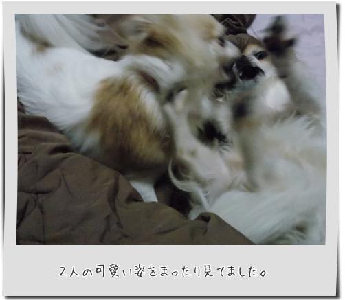 20150712_8.jpg