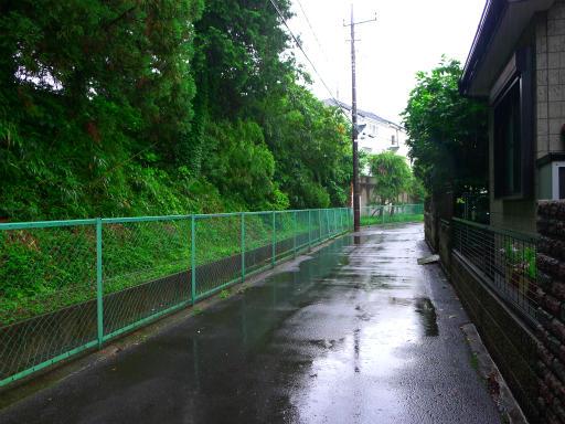 20150619・雨の日のささやき05