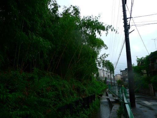 20150619・雨の日のささやき09