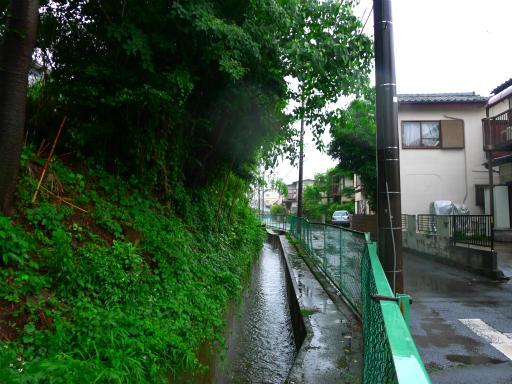 20150619・雨の日のささやき08
