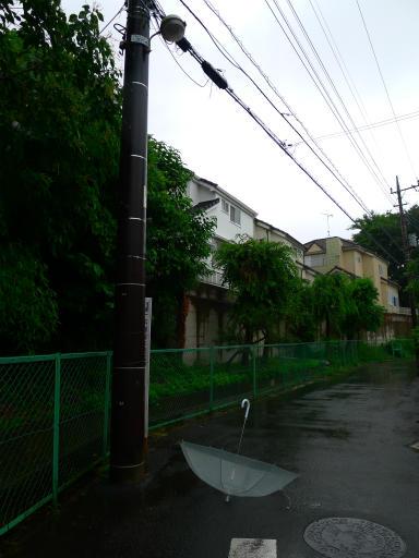 20150619・雨の日のささやき07